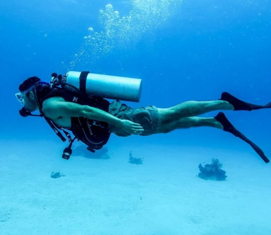 Should I learn Hungarian, or scuba-dive?