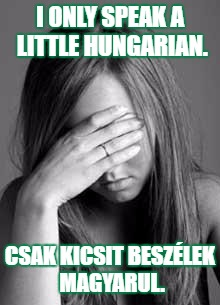 I only speak a little Hungarian