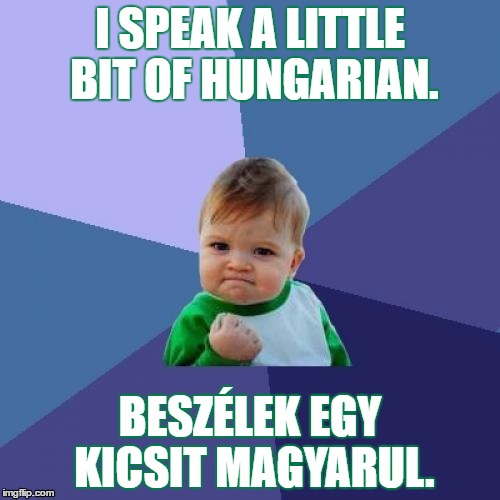 I speak a little Hungarian